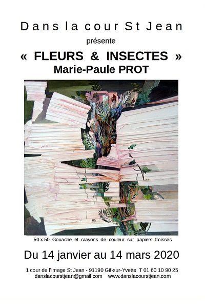 Exposition Fleurs & insectes